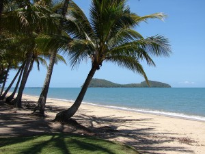 7 - Palm Cove