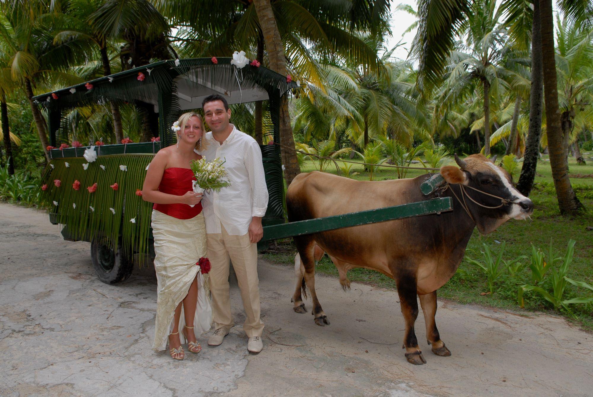Matrimonio Simbolico Alle Seychelles : Matrimonio in libertà alle seychelles